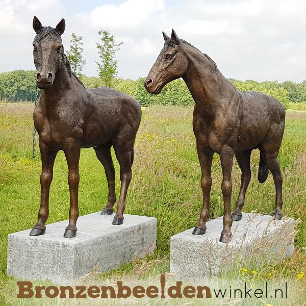 tuinbeeld met paard