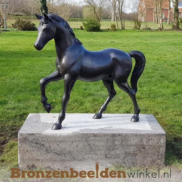 tuinbeeld paard, paardenbeeld
