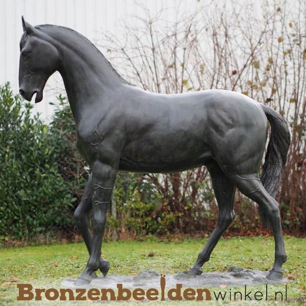 tuinbeeld paard, levensgroot paard