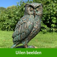 uilen beelden