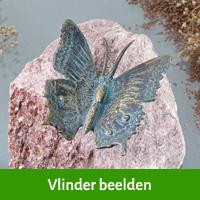 vlinder beelden