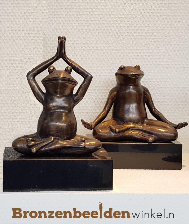 yoga kikker
