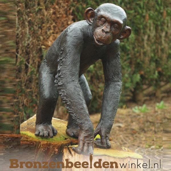Bronzen aap, apenbeeld kopen
