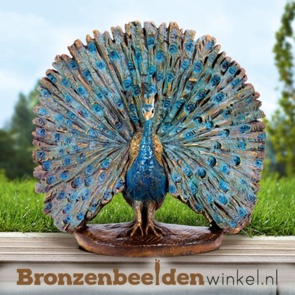 Bronzen pauwen, beeld paauw