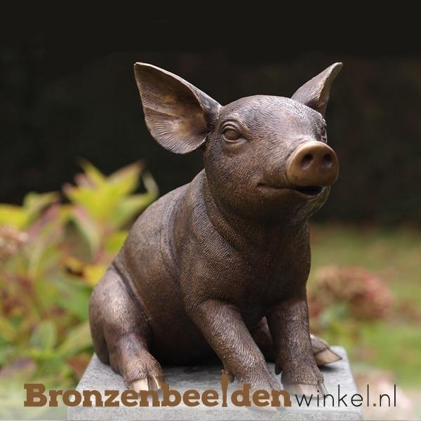 Bronzen varken, tuinbeeld varken