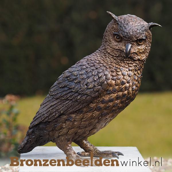 Bronzen uilen, beeld uil