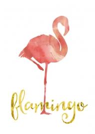 Poster Flamingo zachtroze aquarel met tekst