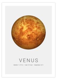 Poster van Venus