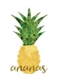 Poster Ananas aquarel met tekst