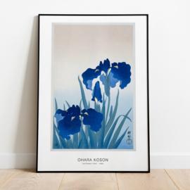 Japanse kunstposter Irisbloemen