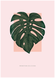 Poster Monstera blad roze
