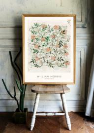 Poster William Morris - Jasmine (1876)