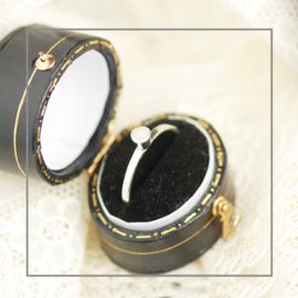 Ring Bright Eye Zilver