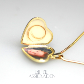 Collier Moedermelk Medaillon