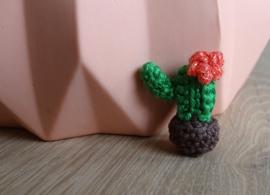 Bedel gehaakte cactus