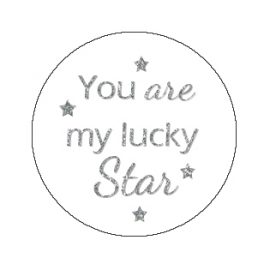 "Tekst slider voor 15 mm armband ""You are my lucky star"""