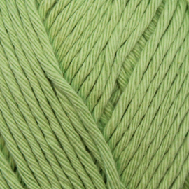 Yarn and Colors Epic - Lettuce 081