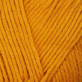 Yarn and Colors Epic - Mustard 015