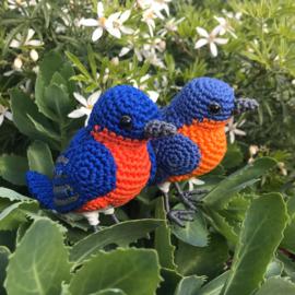 Garenpakket | Miekscreaties Roodkeelsialia vogel