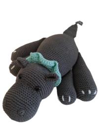 Nijlpaard Rory