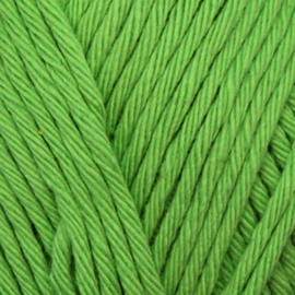 Yarn and Colors Epic - Pesto 085