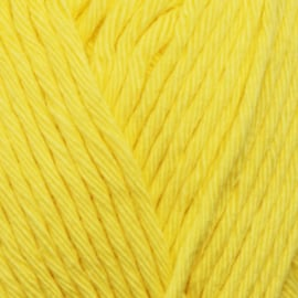 Yarn and Colors Epic - Lemon 012