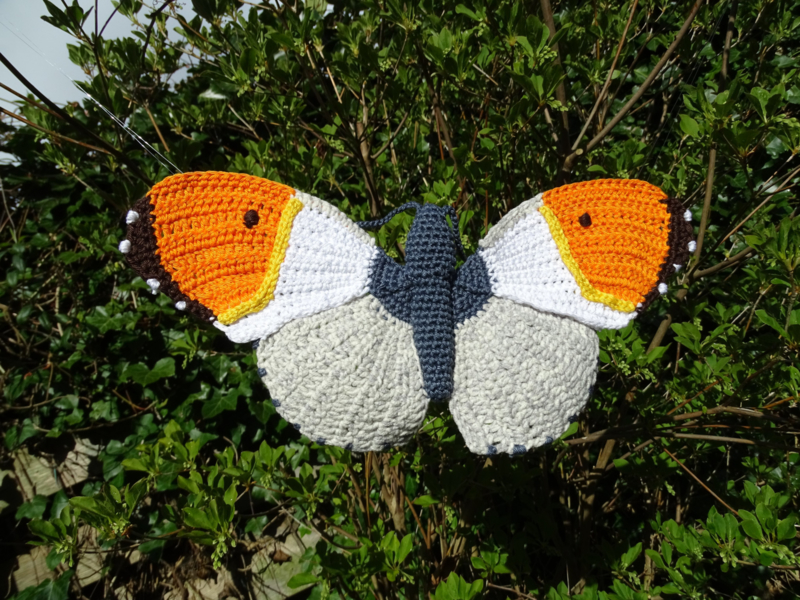 Garenpakket | Miekscreaties Oranje tipje  Vlinder