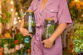 Ecosysteem met edelsteen in duurzame pot