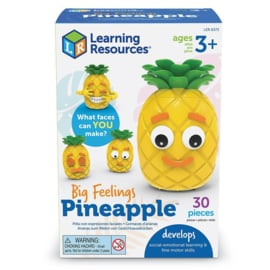 Ananas Emotie Spel    Learning Resources   30 dlg.