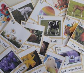 Woordkaarten lente/Pasen