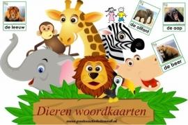 Woordkaarten Safari