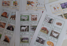 Woordkaarten (129 stuks)