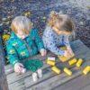 Let's Roll  Kriebelbeestjes | Yellow Door | 6 dlg.