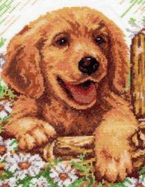 painting hondje