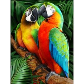 painting papagaaien
