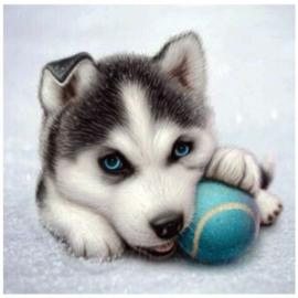 painting hondje met bal