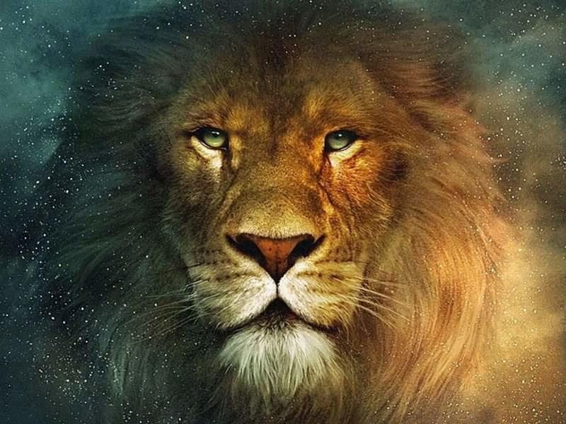 painting leeuw