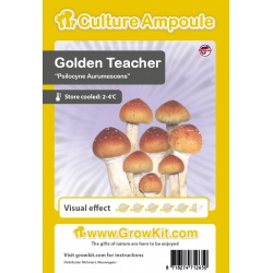 Golden Teacher magic mushrooms spore 10 ml