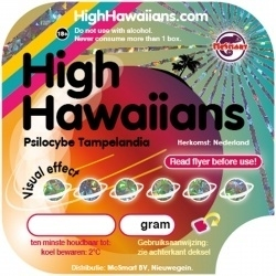 High Hawaiians 22gram