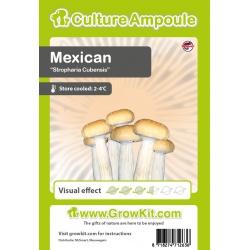 Mexican Magic Mushrooms-sporen 10ml