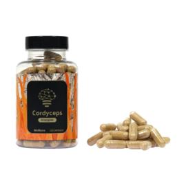 Cordyceps Militaris 120 capsules