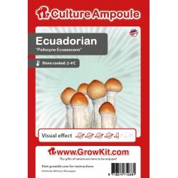 Ecuadoraanse Magic Mushrooms Spores 10ml