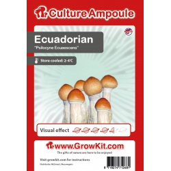 Ecuadorian Funghi magici spore 10 ml