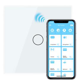 Handmatig bedienbaar en met de Livolo App (Smart Home)