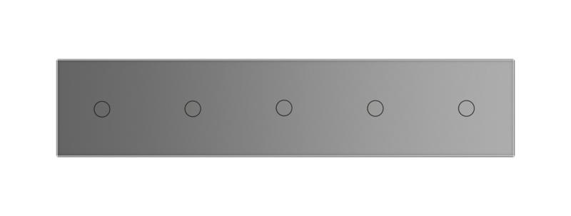 Livolo | Glasplaat | 1+1+1+1+1 | Grijs