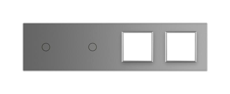Livolo   Grijs glasplaat   Combinatie   1+1+SR+SR