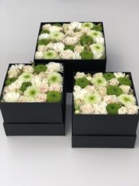 Flower Box vierkant
