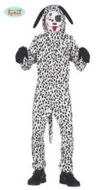 Dalmatier hond