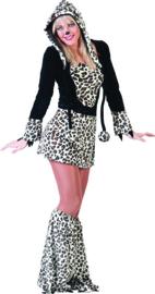 Leopard Lexi