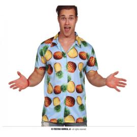 Hawaii blouse pineapples